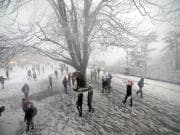 Shimla witnesses first snowfall of the season as cold wave sweeps north India