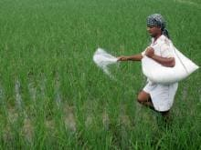 Agriculture sector growth likely to be higher than CSO estimate of 2.1%, says ministry