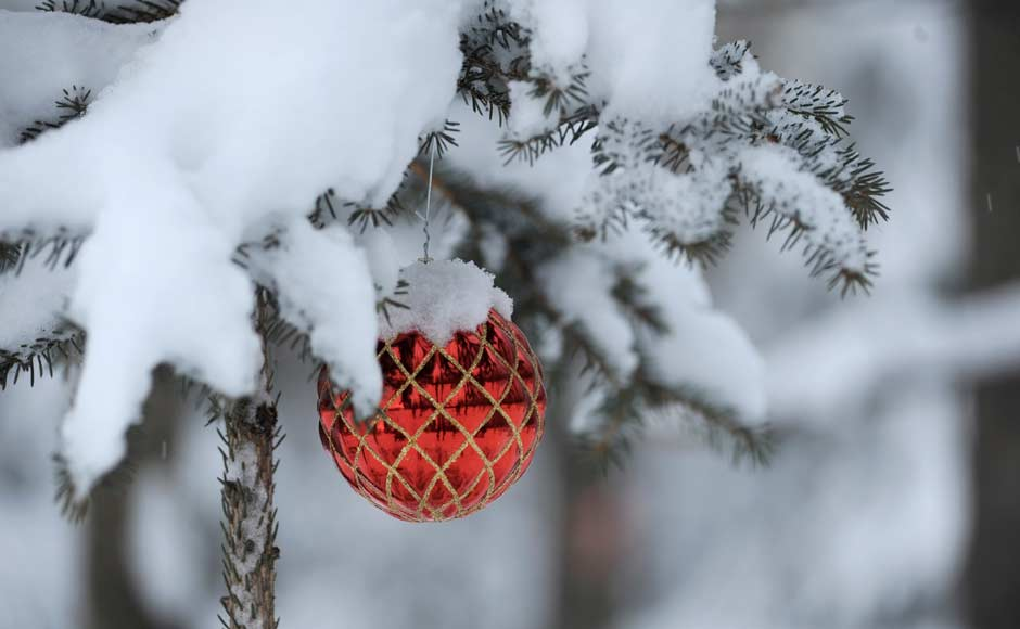 Ornaments covered in snow in Alaska, USA. AP