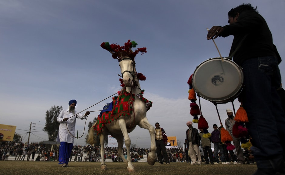 "A horse has a field day, as it is made to dance to the rhythm of a drum during the ""Indian Rural Olympics"". AP"