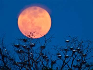 Thiruvananthapuram prepares for a lunar trilogy; to witness lunar eclipse, Supermoon and Blue Moon on 31 January