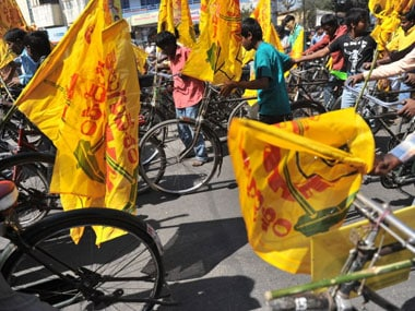 File image of TDP flags. AFP