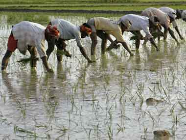 Farming challenge. Reuters