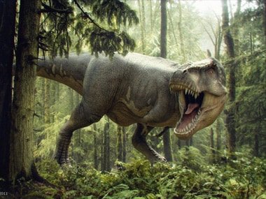 Smaller is better: How the T-rex evolved into Tweety