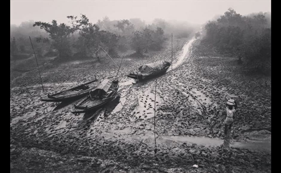 At the Sunderbans, man, river and forest share a close relationship. Dire poverty urges people to fish in the river and collect honey and firewood in the forest to make their living, as seen in this photograph by 36-year-old businessman, Supriyo Ranjan Sarkar.