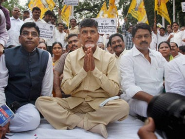 A file photo of Chandrababu Naidu. PTI