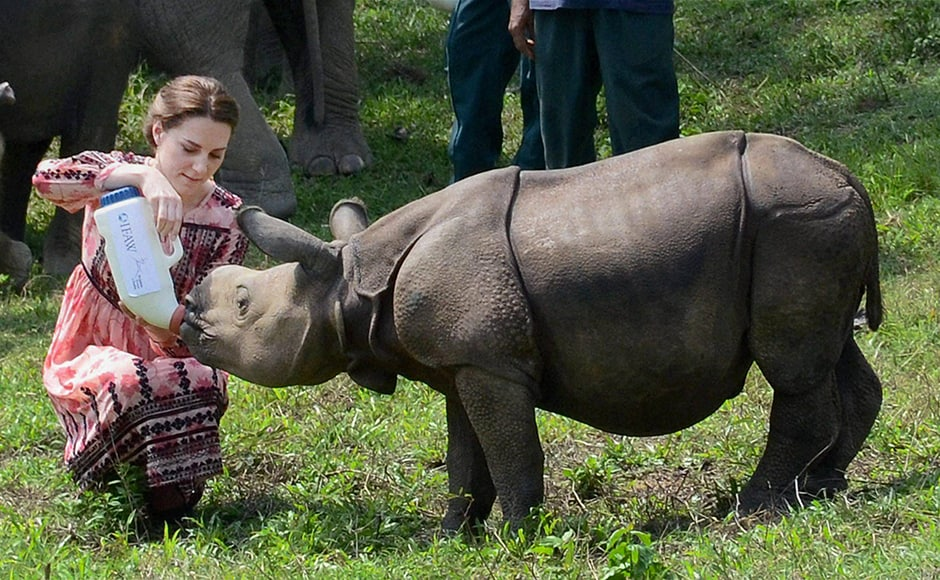 Kate feeds a rhino calf during a visit to the CWRC on Wednesday. PTI Photo