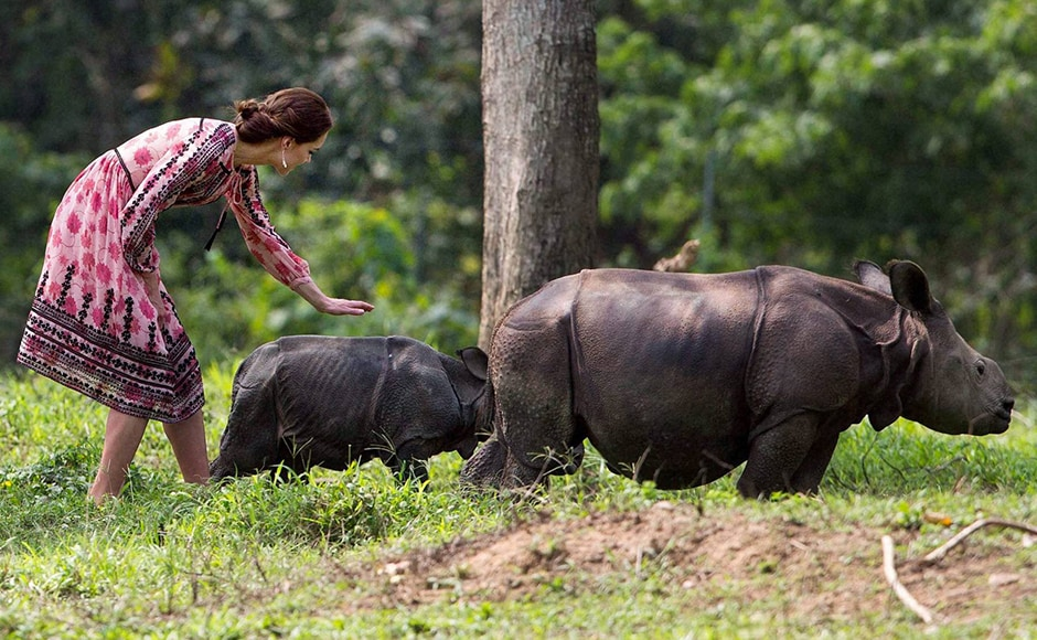 Kate pets a rhino calf during a visit to the Centre for Wildlife Rehabilitation and Conservation (CWRC) near Kaziranga National Park. PTI Photo