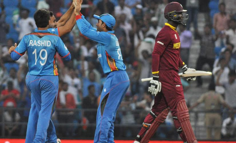 Darren Sammy walks back after getting dismissed during West Indies vs Afghanistan match. Solaris Images