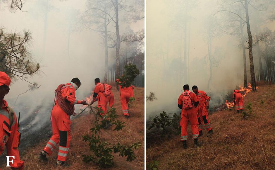 An NDRF team is seen fighting fire in Uttarakhand. About 19,000 hectares of forest have been gutted in the blaze. Image courtesy: NDRF