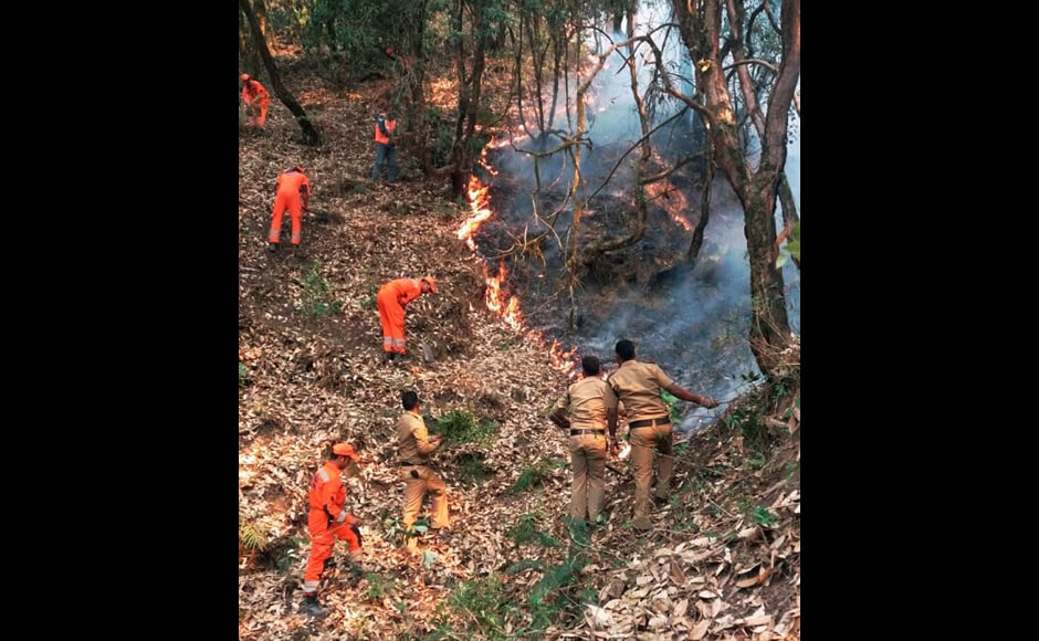Officials extinguishing the fire in the forests at Kotdwar, Uttarakhand. PTI