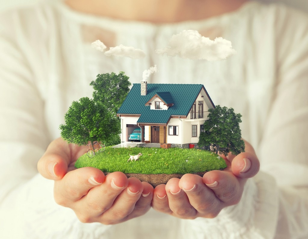 Image Courtesy: Shutterstock
