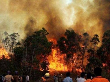 File photo of the Uttarakhand forest fire. PTI
