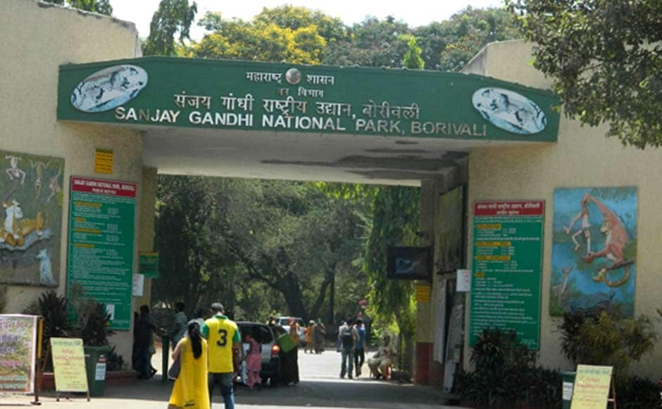 """The minister also released a pamphlet """"Living With Leopards"""" containing practical ways to reduce man-animal conflict in the vicinity of Sanjay Gandhi National Park area. PTI"""