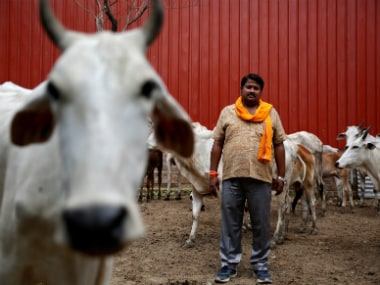 Digvijay Nath Tiwari, the commander of a Hindu nationalist vigilante group established to protect cows, is pictured with animals he claimed to have saved from slaughter, in Agra. Reuters