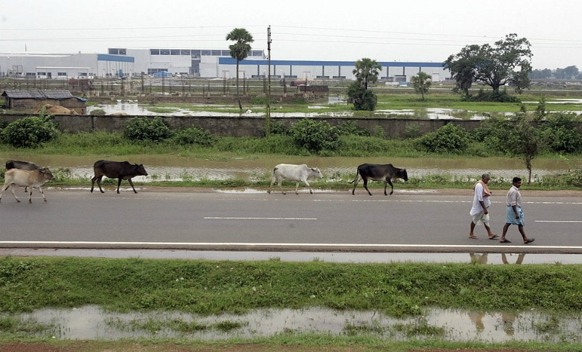 Indian villagers walk past the unfinished Tata Motors plant at Singur. Getty Images