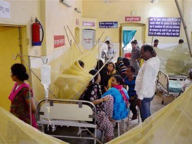 Delhi govt blames LG, MCD for chikungunya in the capital. PTI