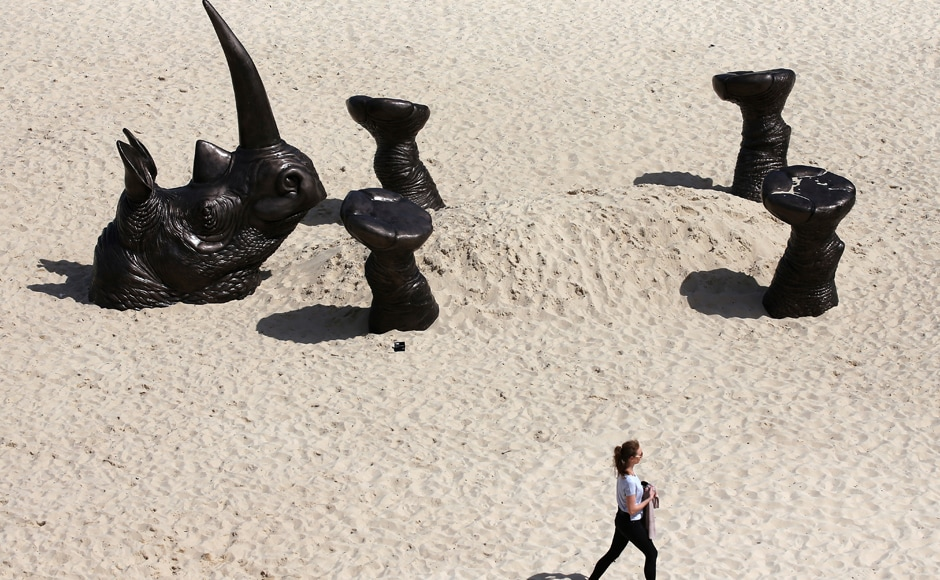 Australia's annual 'Sculpture by the Sea' exhibition showcased more than 100 giant figures looming along the coastline between Bondi and Tamarama beaches near Sydney. The picture is a work titled 'Buried Rhino' by artists Gillie and Marc Schattner. Photo: AP