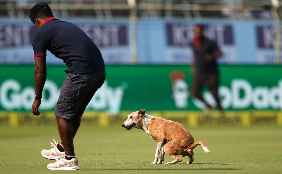 A member of the ground staff prepares to throw his shoe at a dog that ran into the field during the first day of second cricket test match between India and England in Visakhapatnam, India, Thursday, Nov. 17, 2016. (AP Photo/Aijaz Rahi)