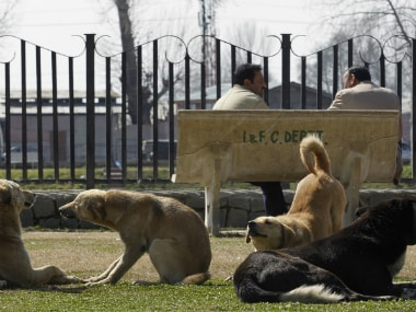 Animals. Representational image. Reuters