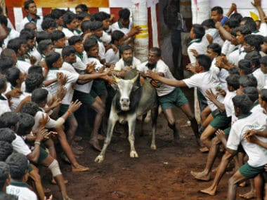 The protests against ban on jallikattu have taken the form of a fight for Tamil pride. Reuters