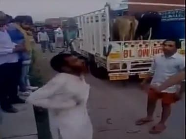 Pehlu Khan had purchased cows from a cattle fair in Jaipur. Image courtesy: YouTube screengrab