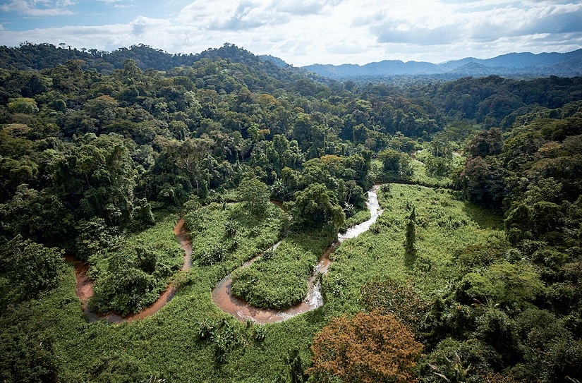 Valley of T1. Image courtesy Lost City of the Monkey God