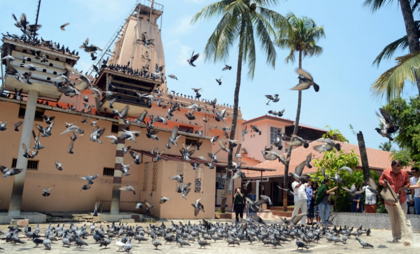 Feeding of the pigeon is a custom practiced at the Jain Temple every day at 12 noon. Photo courtesy: Rajesh Kumar
