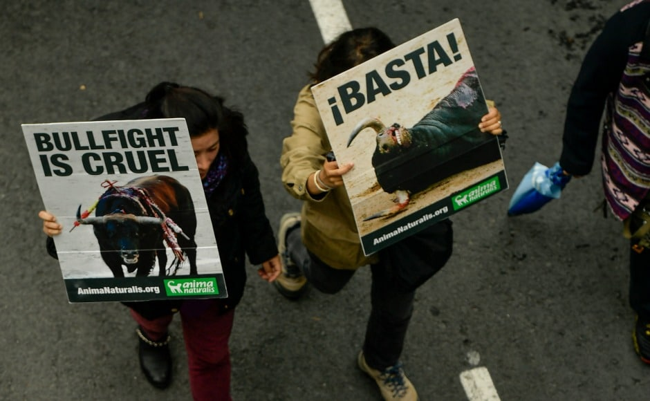 The protest launched under the name of 'San fermin without blood' is led by the People for the Ethical Treatment of Animals, or PETA, and the Spanish NGO AnimalNaturalis. They have demanded to end this blood sport. However, the government is yet to take any action to stop the festivities. AP