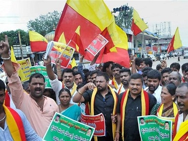 Kannada activists with karnataka's unofficial flag. PTI