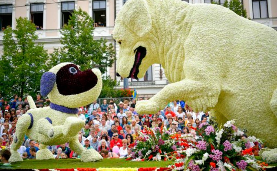 The highlight of the one-week fiesta is the carnival parade on 20 August — a national holiday when Hungarians celebrate the foundation of the Hungarian State — when spectacular flowerfloats decorated with hundreds of thousands of flowers parade through the streets of the city accompanied by Hungarian and foreign folk dance groups, orchestras and majorettes. AP