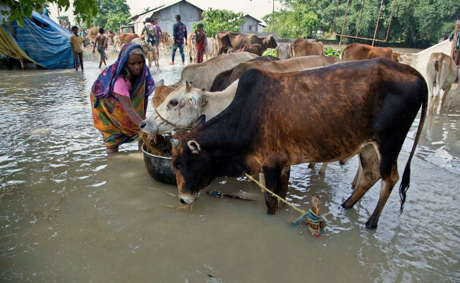 More than 30 lakh people have been affected in over 24 districts of the state, while eight rivers have already flowed above the danger level. AP