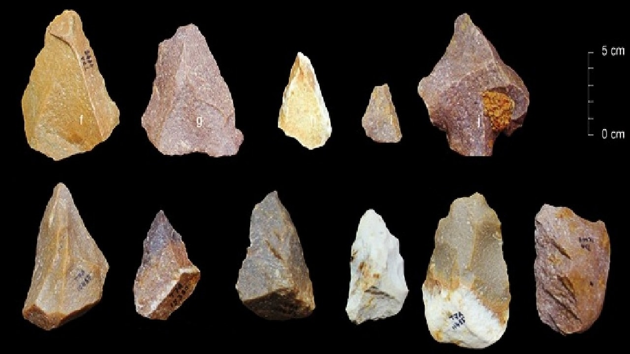 The stone tools found by Indian scientists. ISW