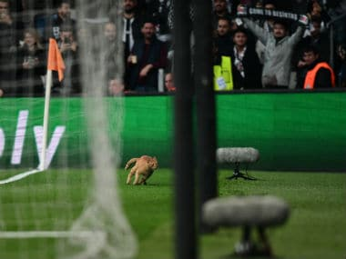 Champions League: UEFA charges Besiktas after cat invades pitch during last-16 clash against Bayern Munich