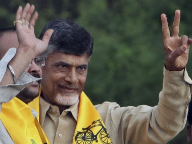 File image of Andhra Pradesh chief minister N Chandrababu Naidu. AP
