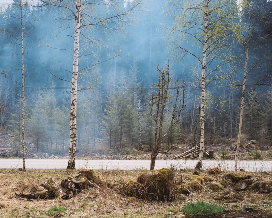 Today, the Forest Finns are recognised as one of the national minorities in Norway.