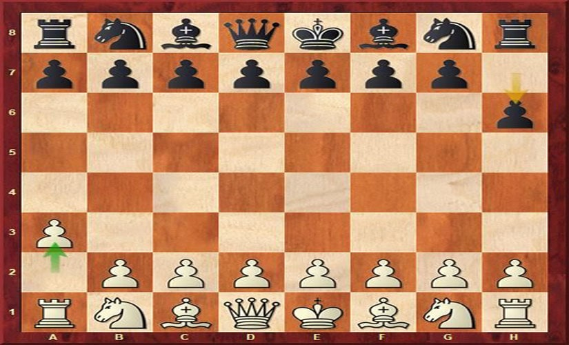 Position after the first move in the match between Richard Rapport and Vladimir Hamitevici.