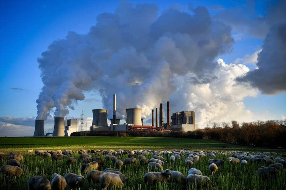 The world needs to find and ramp up ways of taking CO₂ out of the atmosphere to stabilise the climate.  Image credit: SASCHA STEINBACH/EPA