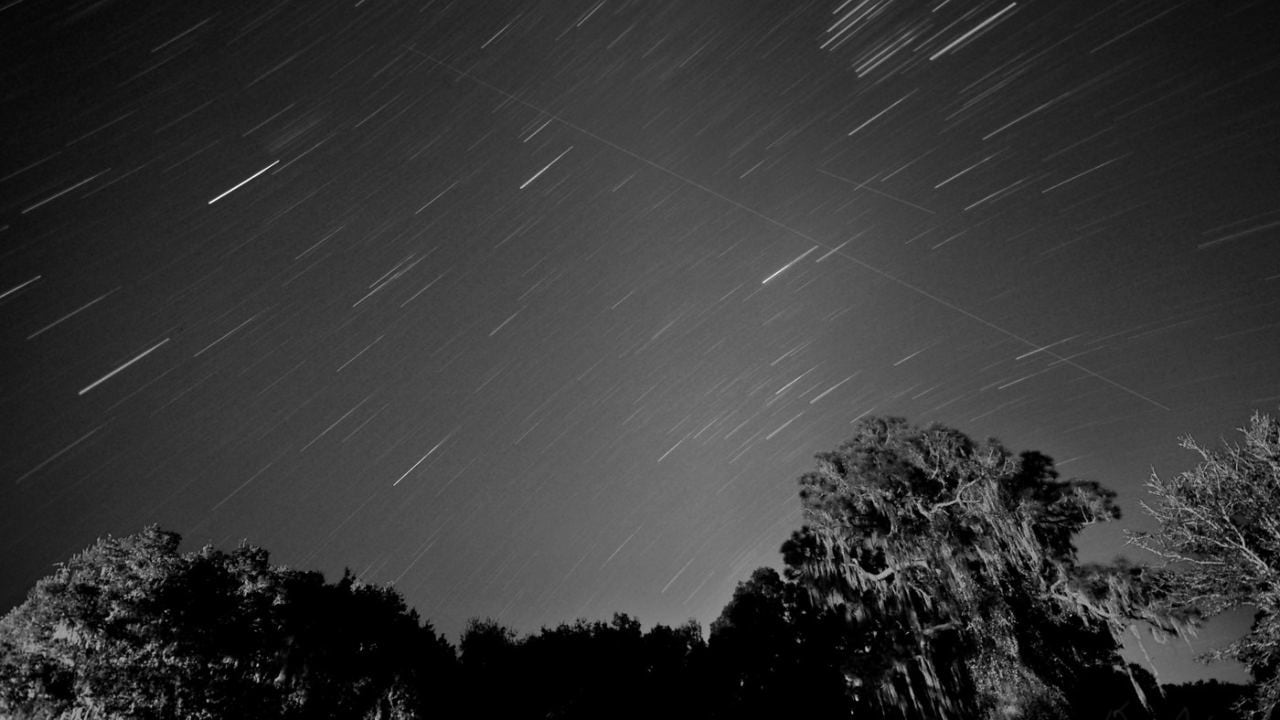 Leonids meteor shower to peak this week