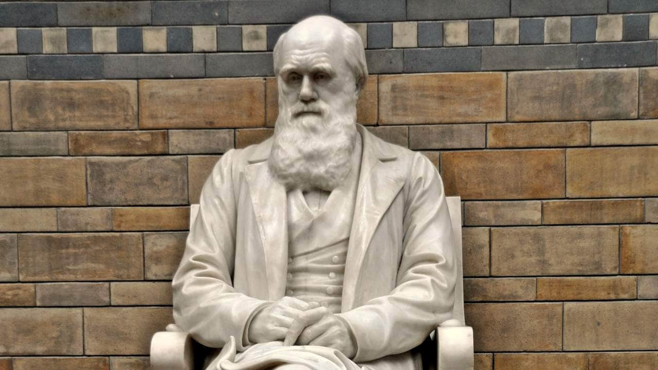 Charles Darwin notebooks 'stolen' from Cambridge University