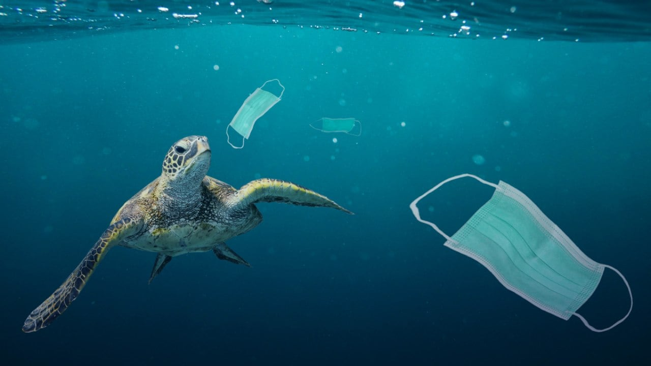Plastic pollution: What happens to the plastic after it enters the ocean?