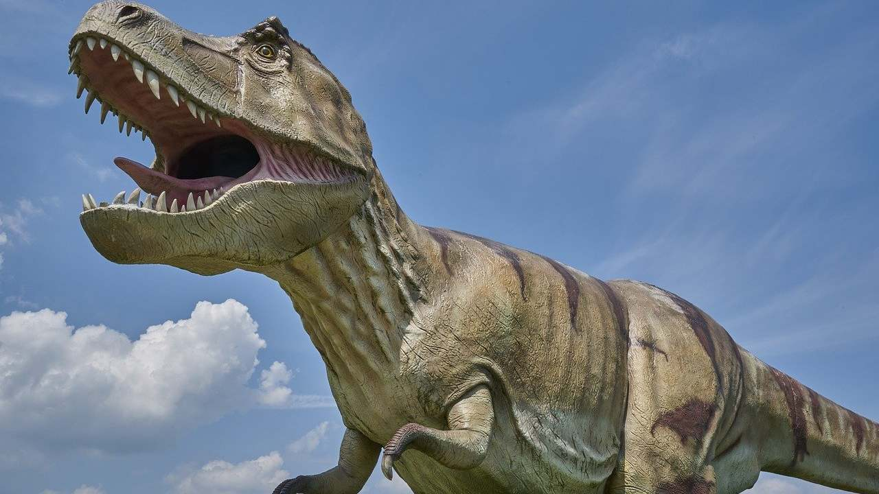 Teen angst? T-Rex, other large dinosaurs out-competed smaller rival species, study finds