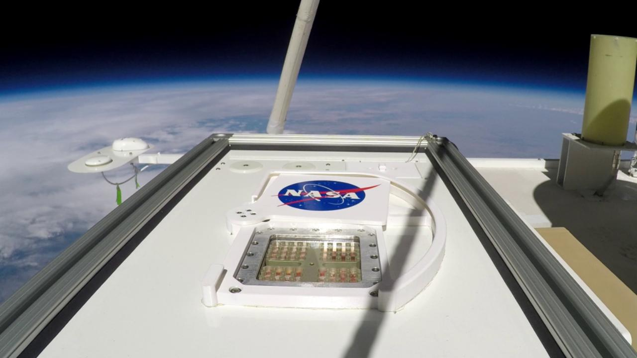 Terrestrial microbes could survive briefly on Mars, be a food source for astronauts: Study