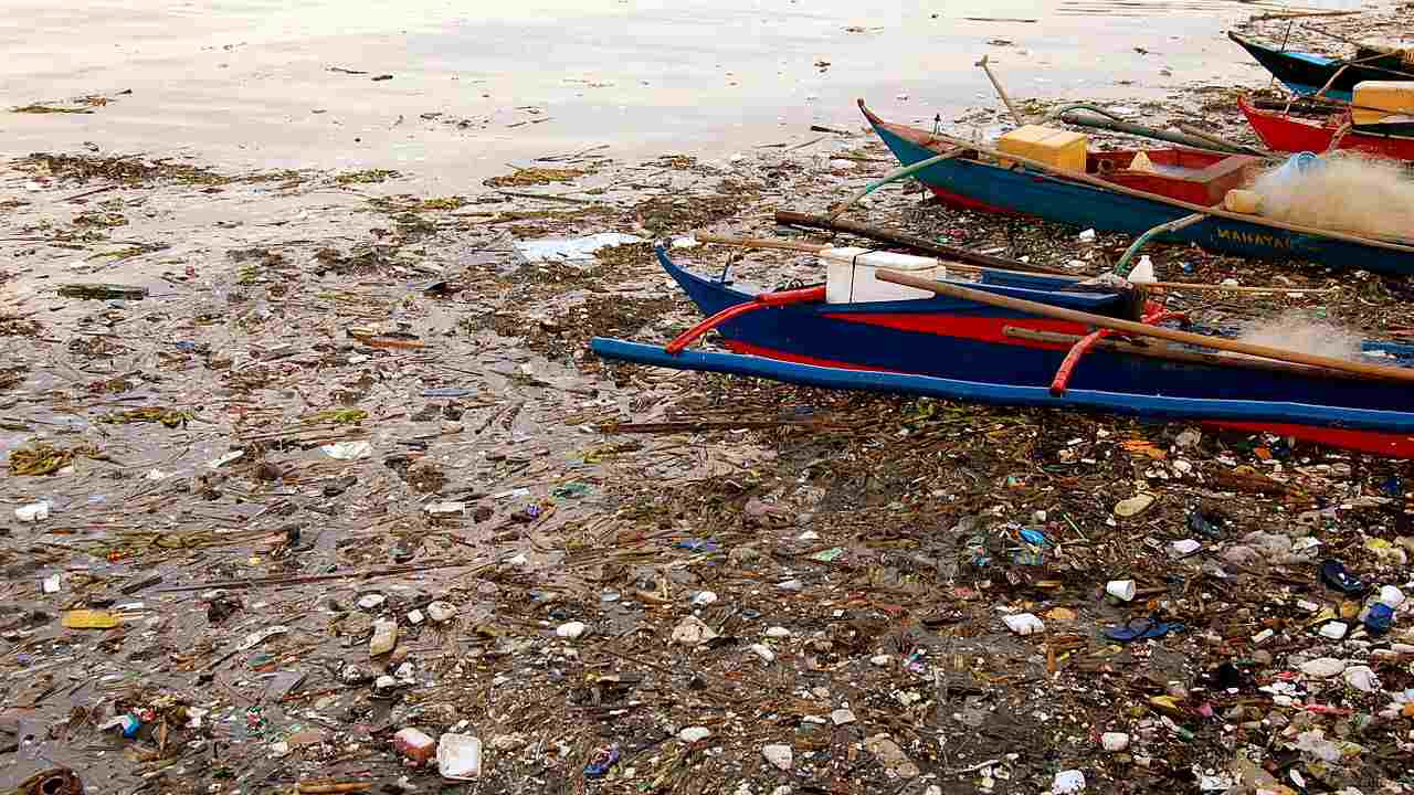 "Pasig River in Manila, Philippines was so polluted in 1990 that ecologists declared it ""biologically dead"". However, clean-up efforts are showing some results as some stretches of the river are showing signs of marine life. Image credit: Manila Bay/Wikipedia"