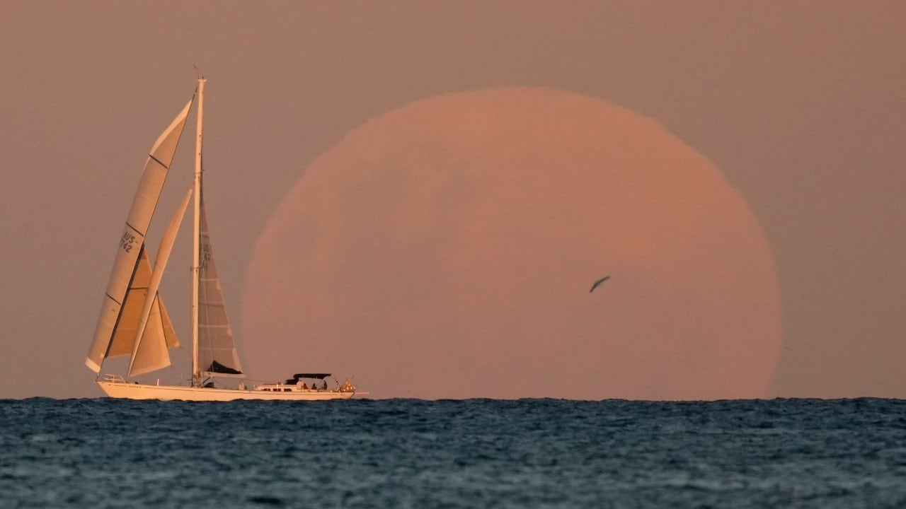 A yacht sails past as the moon rises in Sydney, Australia. Unlike a solar eclipse, there's no harm in looking at an eclipsed moon. Image credit: AP Photo/Mark Baker