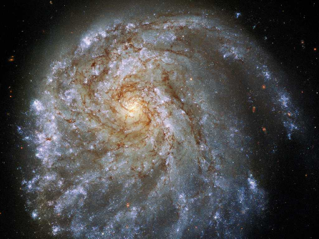 The spiral galaxy NGC 2276 lies 120 million light-years away, in the northern constellation Cepheus. Credits: Publication Partners: NASA, ESA, STScI, Paul Sell (University of Florida)