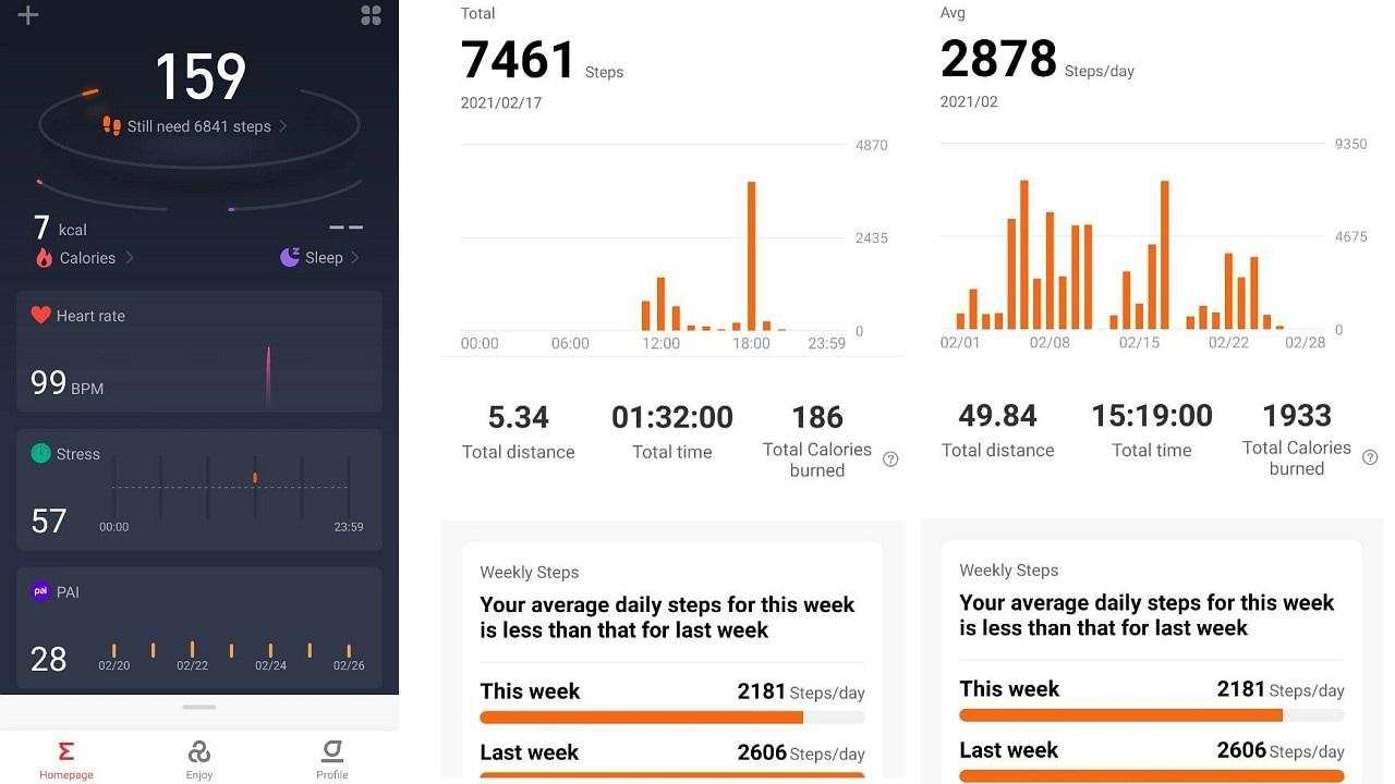 Zepp App fitness tracking