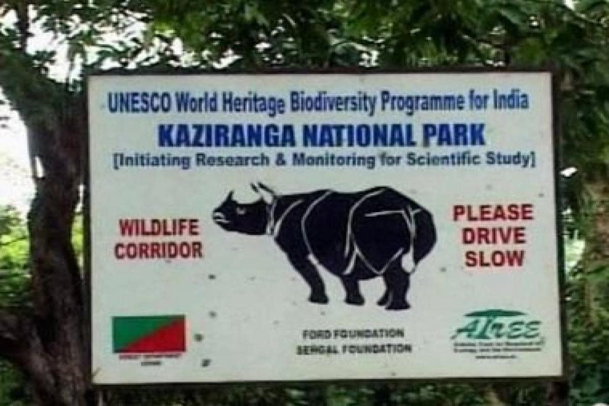 Assam's Kaziranga National Park deploys drones to monitor