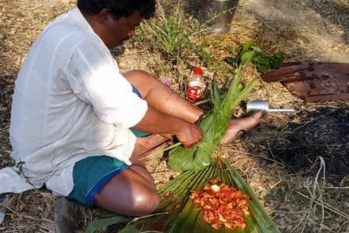 From leafy greens to meat, how Santhal food reflects the