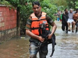 Hapless animals die awaiting help amid Kerala floods; rescue teams scramble to help the ones stranded, abandoned